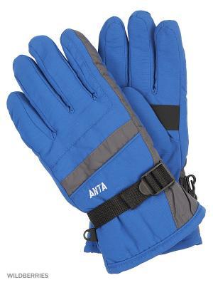 Перчатки ANTA. Цвет: синий
