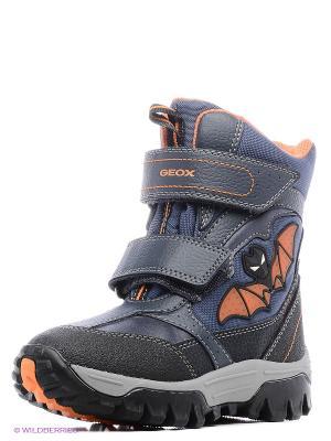 Полусапожки GEOX. Цвет: синий, оранжевый