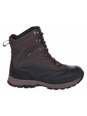 Ботинки Icepeak. Цвет: темно-коричневый