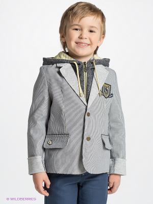Куртка CHOUPETTE. Цвет: серый, белый, черный
