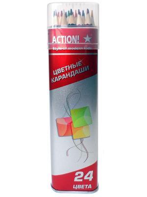 Набор карандашей в металлическом тубусе (24цвета) Action!. Цвет: красный