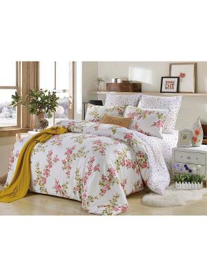 Комплект постельного белья, Вилма , Семейный KAZANOV.A.. Цвет: молочный
