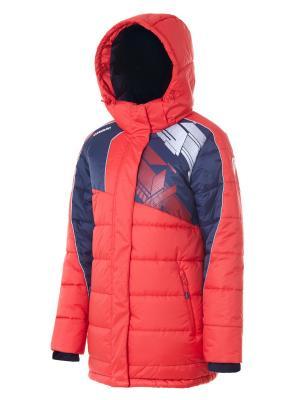 Куртка Утепленная Forward. Цвет: красный, синий