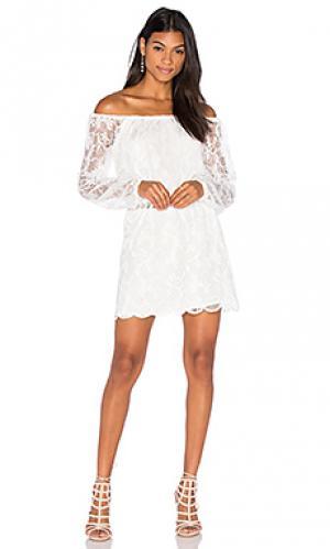 Платье с открытыми плечами dentelle Nightcap. Цвет: белый