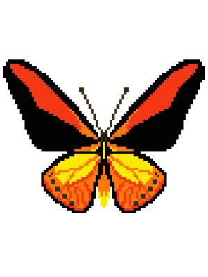 Набор 22х22 (рис/канв., мулине) NITEX. Цвет: желтый, рыжий, черный