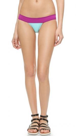 Плавки бикини Chiquita KORE SWIM. Цвет: мульти