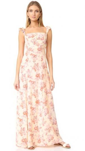 Макси-платье Bardot Flynn Skye. Цвет: кремовые цветы