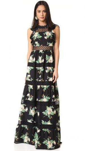 Макси-платье Brianna с цветочным кружевом Whistles. Цвет: черный мульти