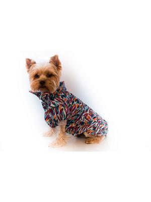 Дождевик Doggy Style. Цвет: зеленый, красный