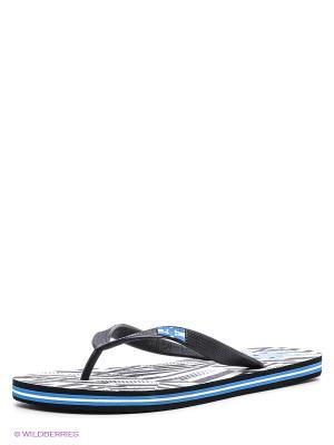 Шлепанцы DC Shoes. Цвет: черный, синий