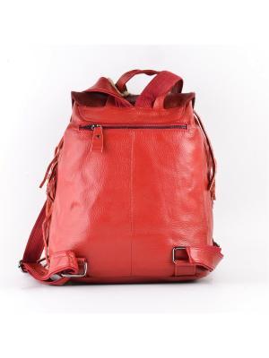 Рюкзак TOPO FORTUNATO. Цвет: красный
