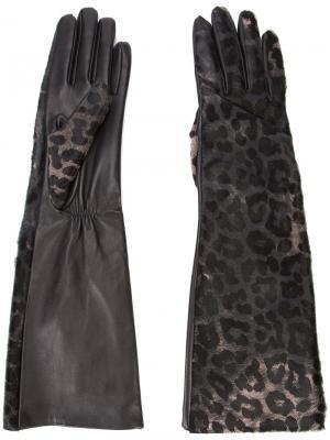 Перчатки с леопардовым принтом Perrin Paris. Цвет: чёрный