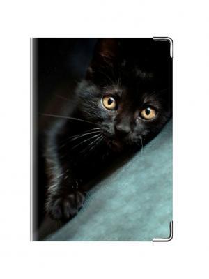 Обложка для паспорта Котёнок Tina Bolotina. Цвет: черный