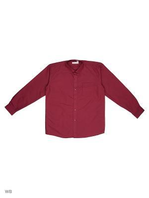 Рубашка FASHION LEADER. Цвет: бордовый
