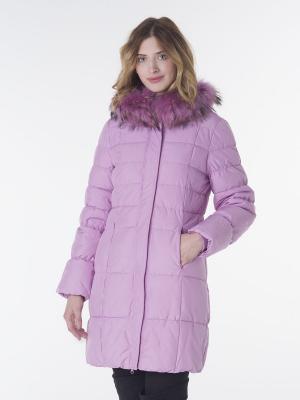 Куртка EPATAGE. Цвет: фиолетовый