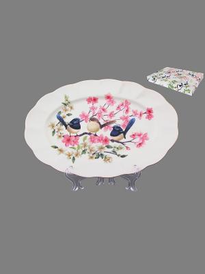 Блюдо Райские птички Elan Gallery. Цвет: синий, розовый, белый