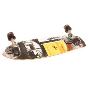 Скейт круизер  C7 Complete Kerrlage Assorted 9.75 x 31.75 (80.6 см) Carver. Цвет: мультиколор