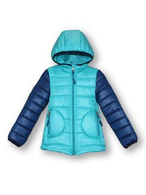 Куртка Артус. Цвет: бирюзовый, темно-синий