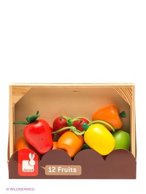 Набор фруктов в ящике Janod. Цвет: красный, желтый, зеленый