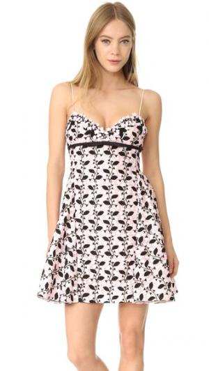 Мини-платье Giambattista Valli. Цвет: черный/розовый