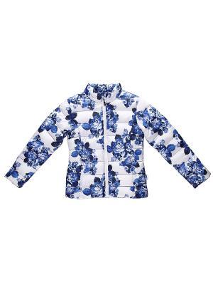 Куртка Luminoso. Цвет: голубой