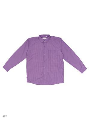Рубашка FASHION LEADER. Цвет: сиреневый