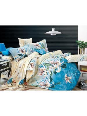 Постельное белье Taina Семейный Amore Mio. Цвет: синий, бежевый, голубой