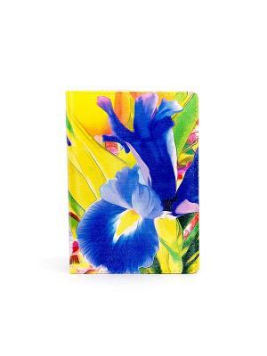 Обложка BarBara. Цвет: синий