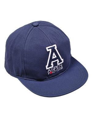 Бейсболка Aspen Polo Club. Цвет: синий