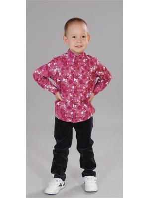Рубашка Милашка Сьюзи. Цвет: бордовый