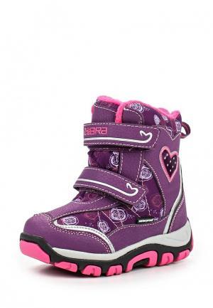Ботинки Зебра. Цвет: фиолетовый