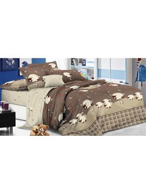 Комплект постельного белья 1,5сп, поплин BegAl. Цвет: коричневый