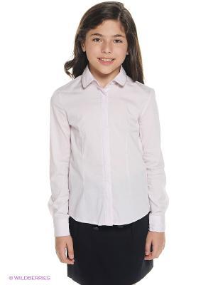 Блузка ACOOLA. Цвет: кремовый