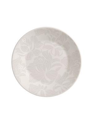 Набор тарелок обеденных БЛАНК ГРЕЙ 24 см 6 шт Biona. Цвет: серый