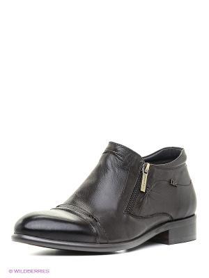 Ботинки Dino Ricci. Цвет: коричневый