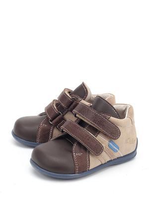Ботинки PAVLE. Цвет: коричневый