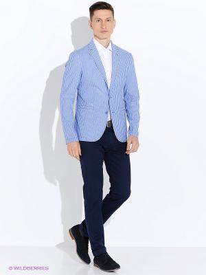 Пиджак ABSOLUTEX. Цвет: голубой, белый