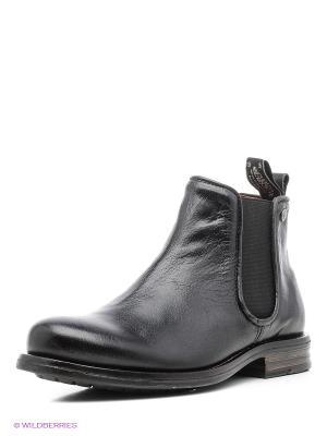 Ботинки Sneaky Steve. Цвет: черный