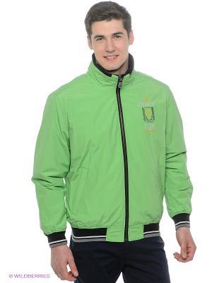 Куртка Stonecast. Цвет: светло-зеленый, белый, серый, темно-синий