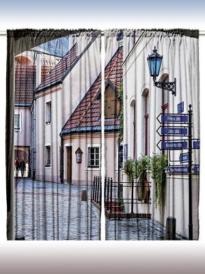 Комплект фотоштор для гостиной Цветы и светлые стены, плотность ткани 175 г/кв.м, 290*265 см Magic Lady. Цвет: бежевый, молочный, синий