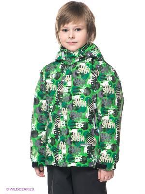 Куртка Kerry. Цвет: зеленый, темно-серый, белый