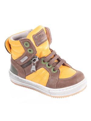 Ботинки TIFLANI. Цвет: хаки, желтый