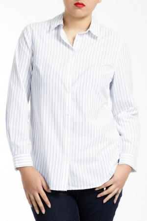 Рубашка SHEEGO. Цвет: light blue and white