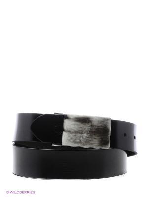 Ремень Alex DANDY. Цвет: черный, молочный, прозрачный