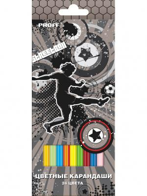 Карандаши 24 цвета PROFF. Цвет: серый