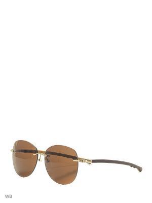 Солнцезащитные очки CX 814 MGD CEO-V. Цвет: коричневый, хаки