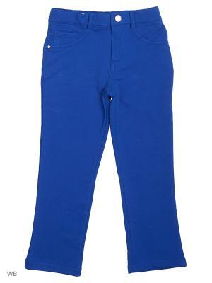 Трикотажные брюки Modis. Цвет: синий