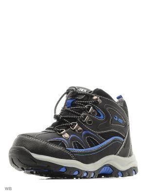Ботинки QWEST. Цвет: черный, синий
