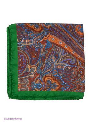 Платок-паше Troy collezione. Цвет: рыжий, зеленый