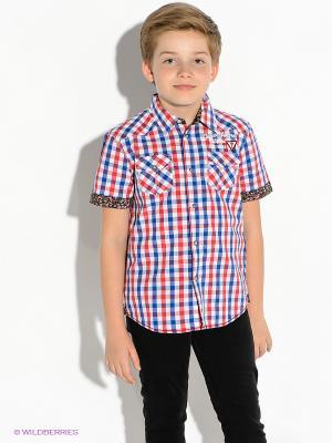Рубашка GUESS. Цвет: синий, красный